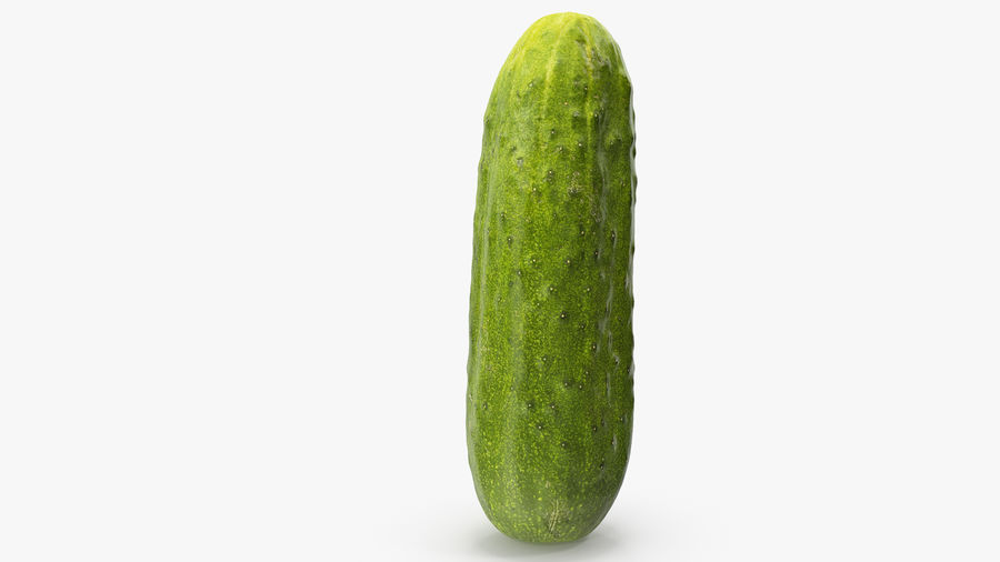 Cucumber 07 Hi Poly royalty-free 3d model - Preview no. 10