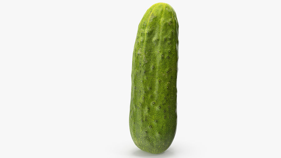 Cucumber 07 Hi Poly royalty-free 3d model - Preview no. 9