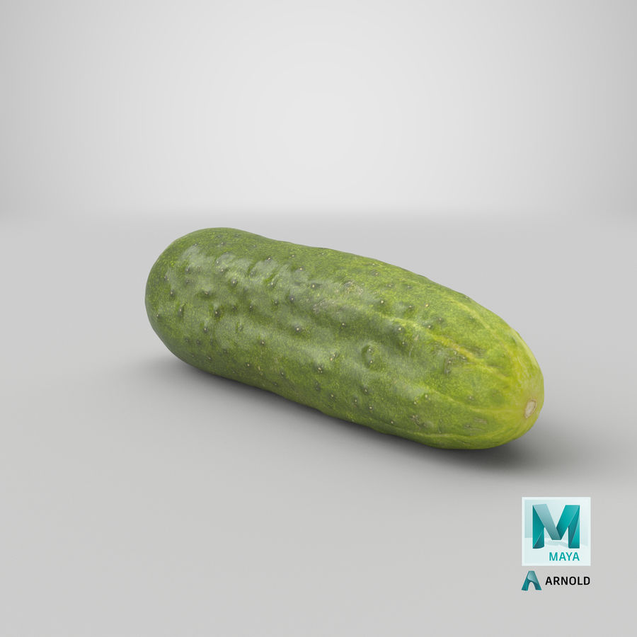 Cucumber 07 Hi Poly royalty-free 3d model - Preview no. 25