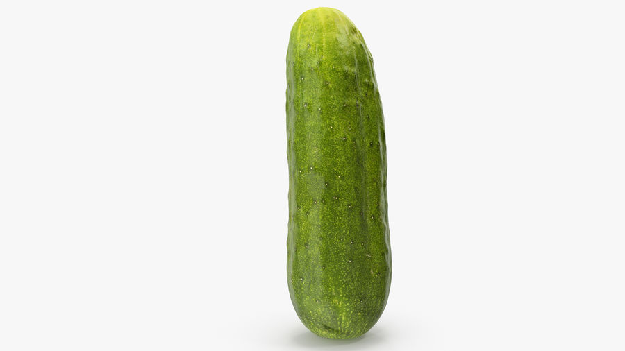 Cucumber 07 Hi Poly royalty-free 3d model - Preview no. 12