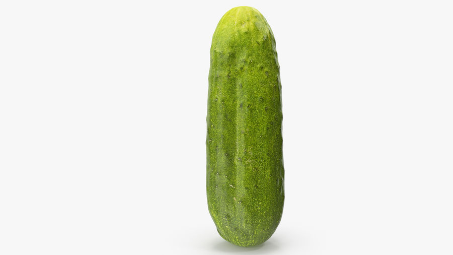Cucumber 07 Hi Poly royalty-free 3d model - Preview no. 11