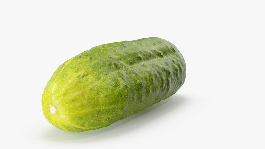 Cucumber 07 Hi Poly royalty-free 3d model - Preview no. 7