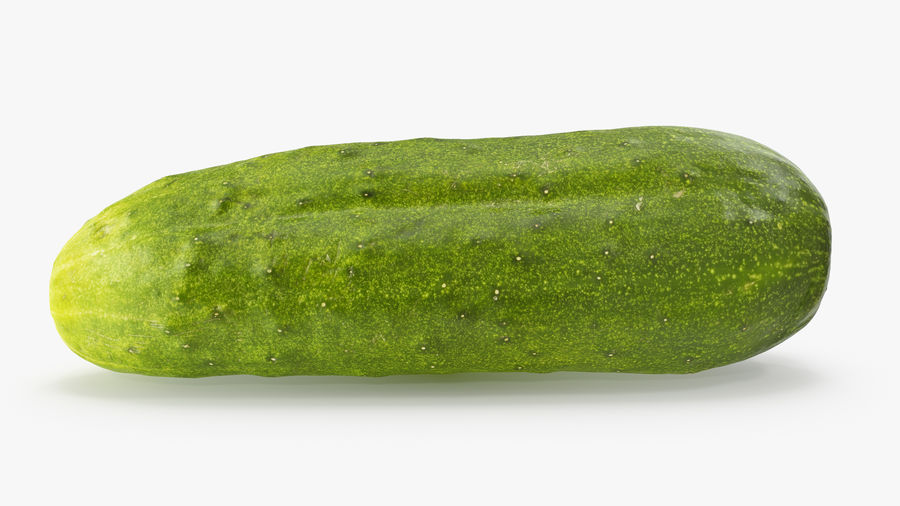 Cucumber 07 Hi Poly royalty-free 3d model - Preview no. 6