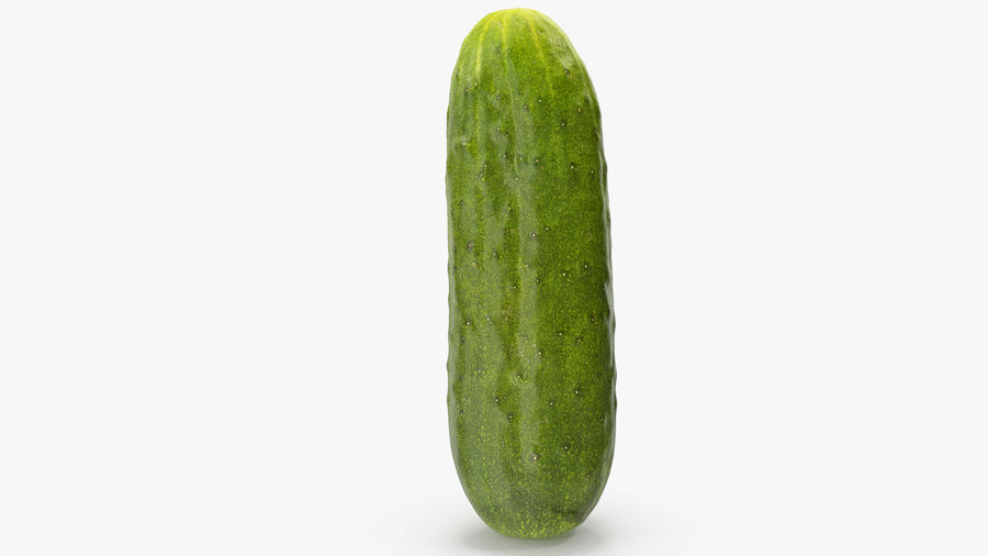 Cucumber 07 Hi Poly royalty-free 3d model - Preview no. 13