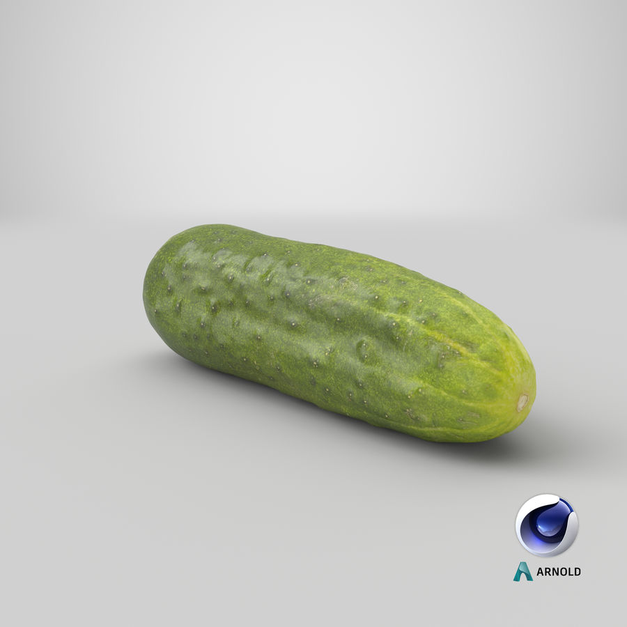 Cucumber 07 Hi Poly royalty-free 3d model - Preview no. 21