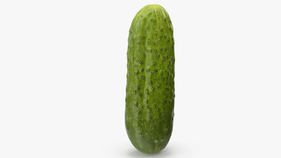 Cucumber 08 Hi Poly royalty-free 3d model - Preview no. 9