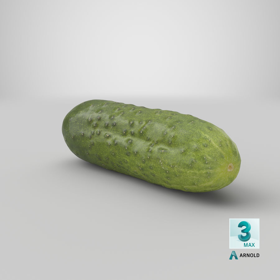 Cucumber 08 Hi Poly royalty-free 3d model - Preview no. 22