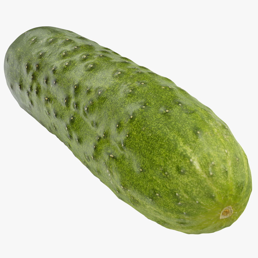 Cucumber 08 Hi Poly royalty-free 3d model - Preview no. 1