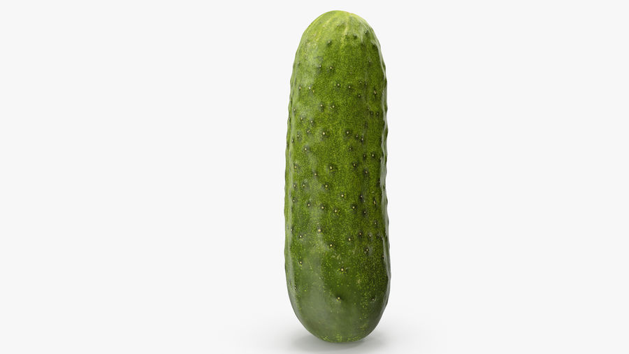 Cucumber 08 Hi Poly royalty-free 3d model - Preview no. 10