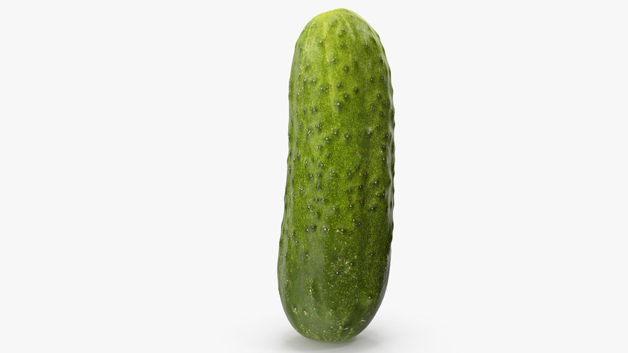 Cucumber 08 Hi Poly royalty-free 3d model - Preview no. 14