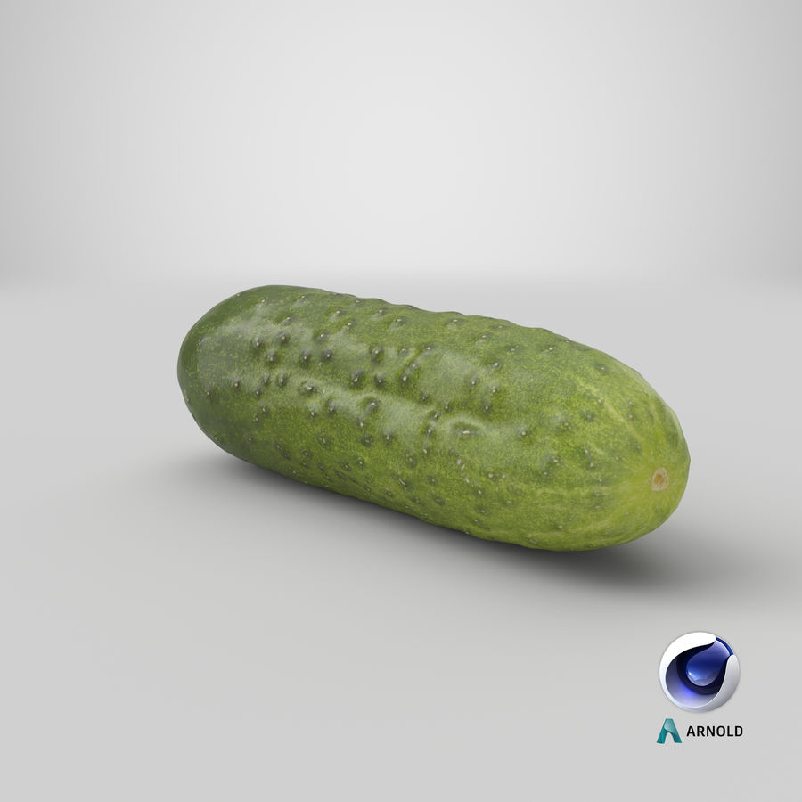 Cucumber 08 Hi Poly royalty-free 3d model - Preview no. 21