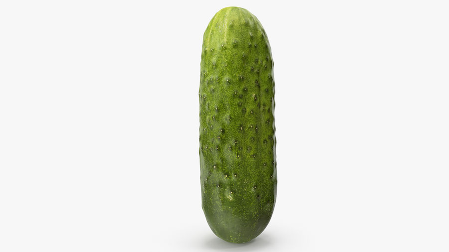 Cucumber 08 Hi Poly royalty-free 3d model - Preview no. 12