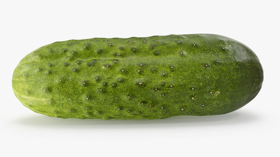 Cucumber 08 Hi Poly royalty-free 3d model - Preview no. 6