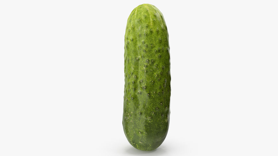 Cucumber 08 Hi Poly royalty-free 3d model - Preview no. 13