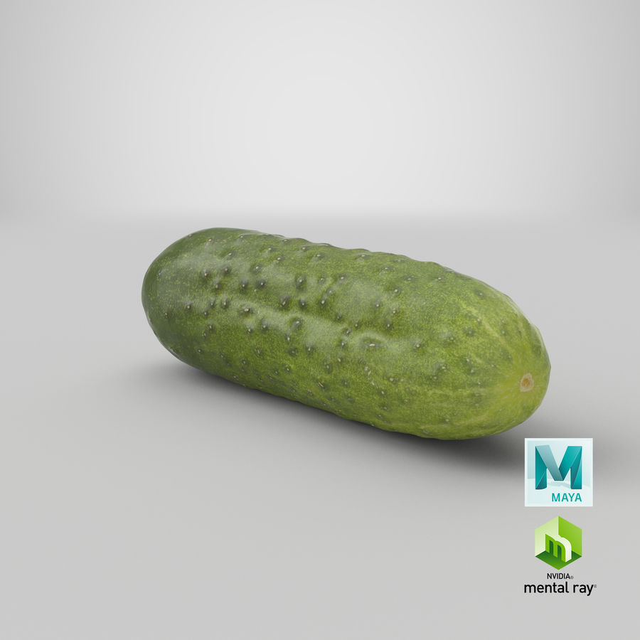 Cucumber 08 Hi Poly royalty-free 3d model - Preview no. 26