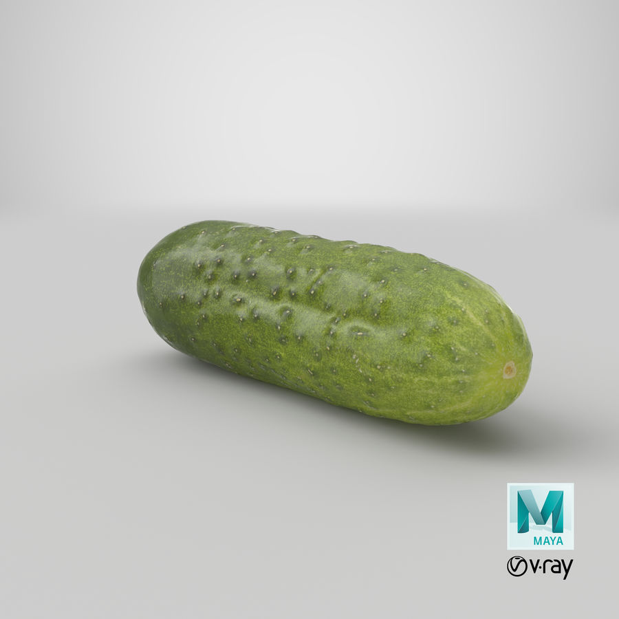Cucumber 08 Hi Poly royalty-free 3d model - Preview no. 27