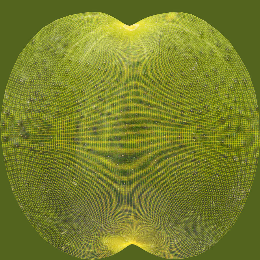 Cucumber 08 Hi Poly royalty-free 3d model - Preview no. 16