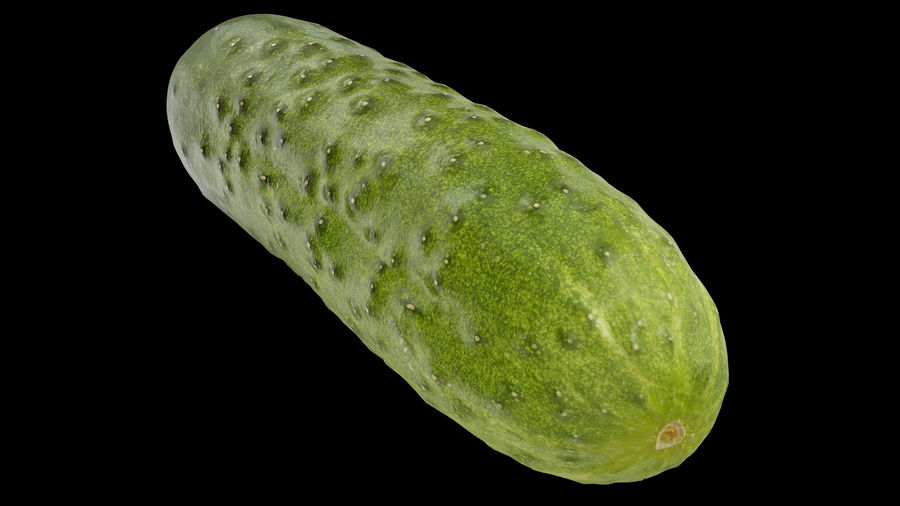 Cucumber 08 Hi Poly royalty-free 3d model - Preview no. 2