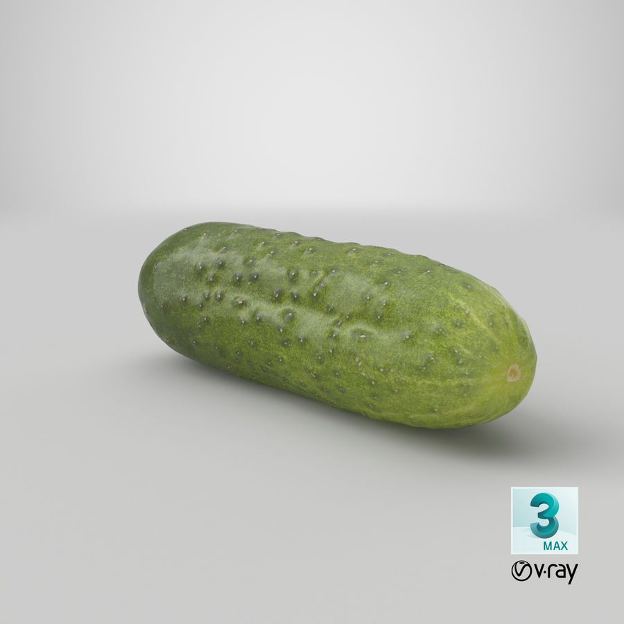 Cucumber 08 Hi Poly royalty-free 3d model - Preview no. 24