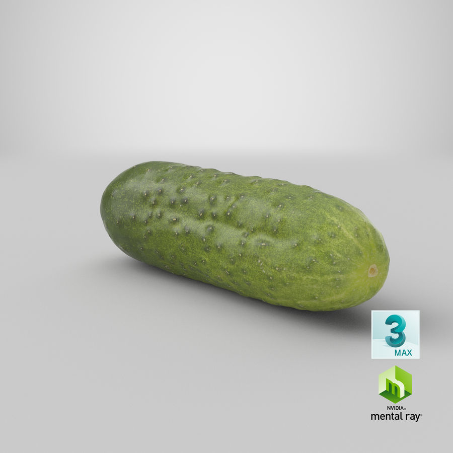 Cucumber 08 Hi Poly royalty-free 3d model - Preview no. 23