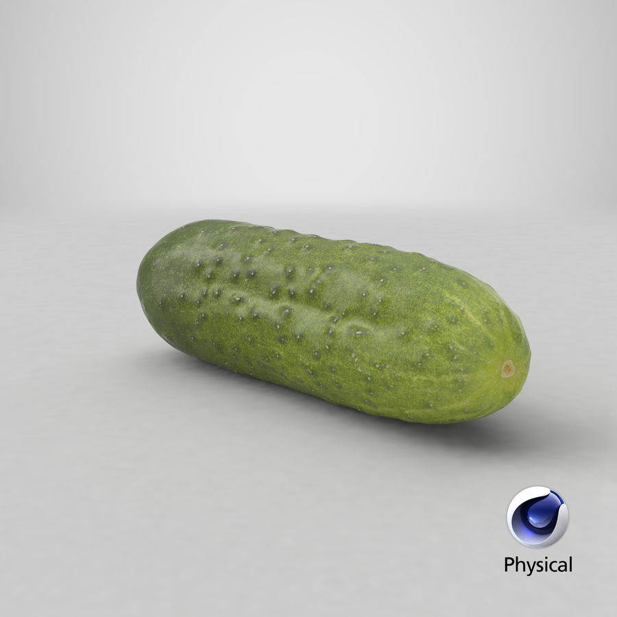 Cucumber 08 Hi Poly royalty-free 3d model - Preview no. 20
