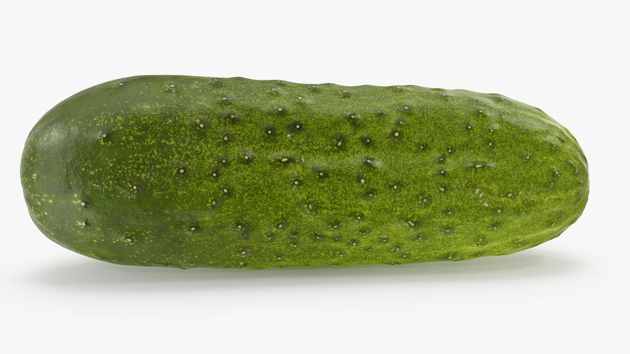 Cucumber 08 Hi Poly royalty-free 3d model - Preview no. 3