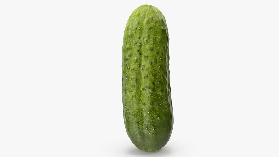 Cucumber 08 Hi Poly royalty-free 3d model - Preview no. 11