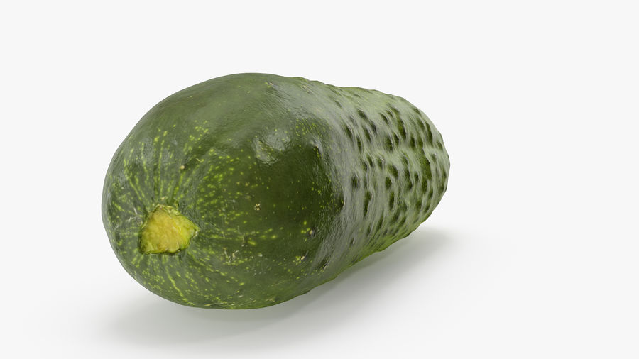 Cucumber 08 Hi Poly royalty-free 3d model - Preview no. 4