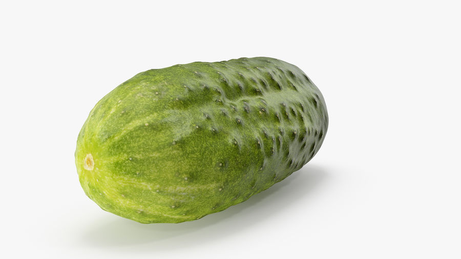 Cucumber 08 Hi Poly royalty-free 3d model - Preview no. 7