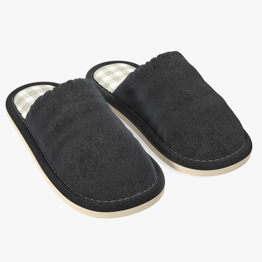House Slippers Generic royalty-free 3d model - Preview no. 1