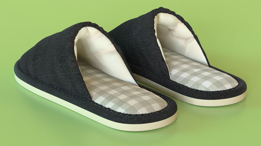 House Slippers Generic royalty-free 3d model - Preview no. 4