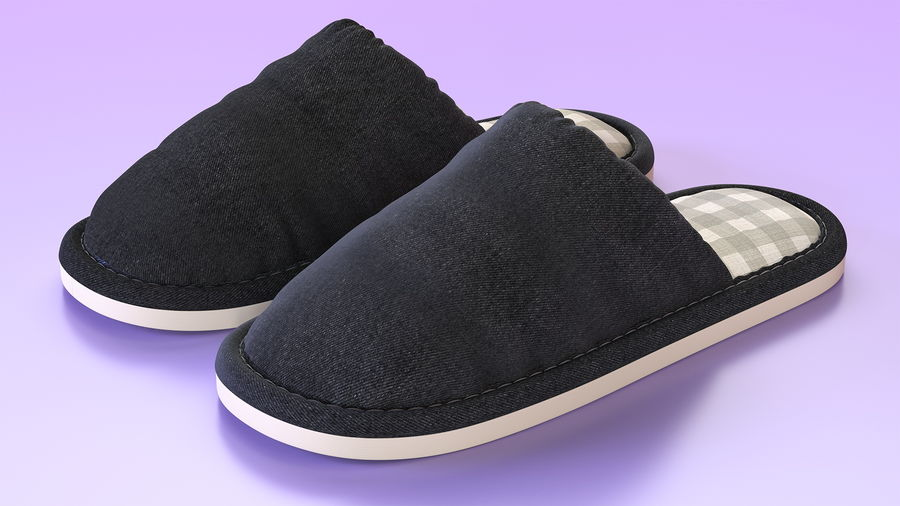 House Slippers Generic royalty-free 3d model - Preview no. 5