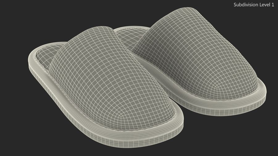 House Slippers Generic royalty-free 3d model - Preview no. 13