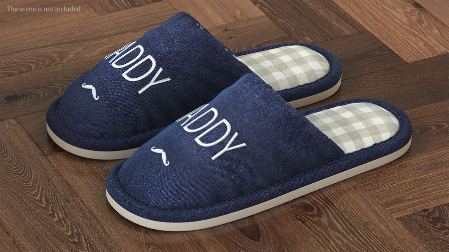 Mens Indoor House Slippers royalty-free 3d model - Preview no. 2