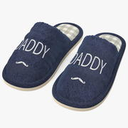 Mens Indoor House Slippers 3d model
