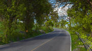 Forest Mountain Road 3d model