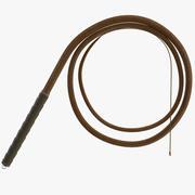 Whip Lasso 3d model