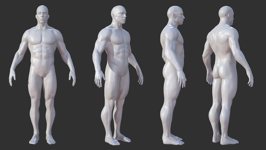 Character - Male Anatomy Body Base HighPoly royalty-free 3d model - Preview no. 2
