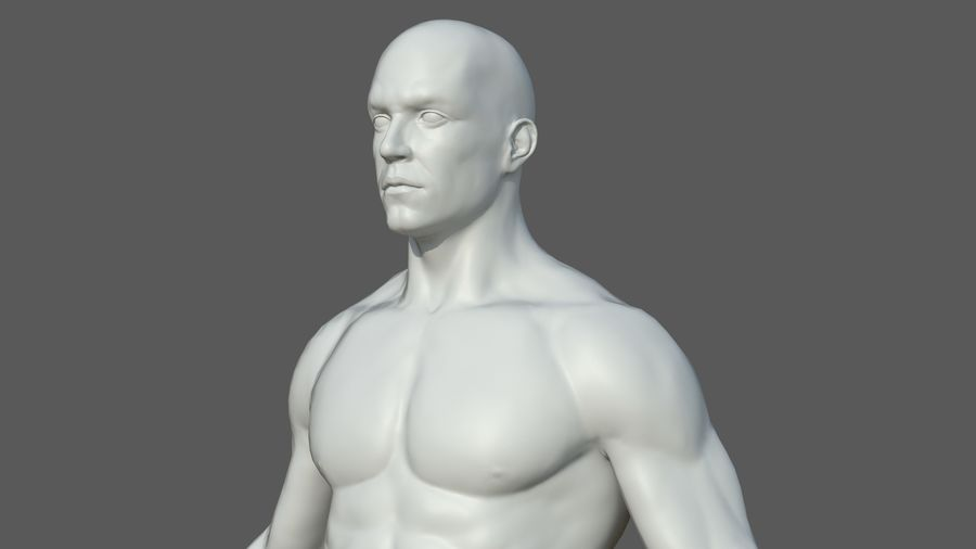 Character - Male Anatomy Body Base HighPoly royalty-free 3d model - Preview no. 52