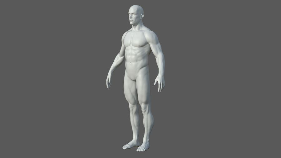 Character - Male Anatomy Body Base HighPoly royalty-free 3d model - Preview no. 29