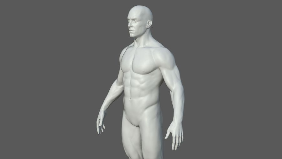 Character - Male Anatomy Body Base HighPoly royalty-free 3d model - Preview no. 37
