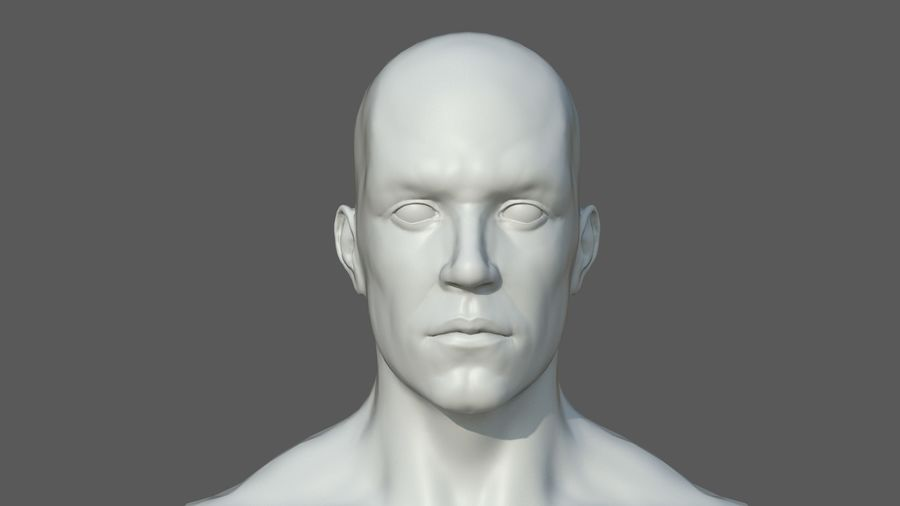 Character - Male Anatomy Body Base HighPoly royalty-free 3d model - Preview no. 42