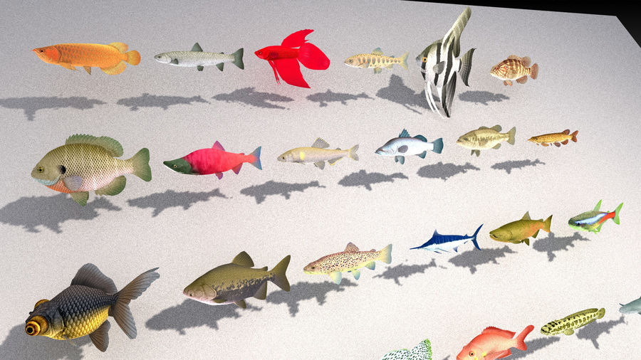 fish asset royalty-free 3d model - Preview no. 2