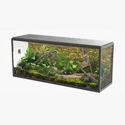 Terrarium 3d model