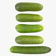 Cucumbers 04-08 3d model