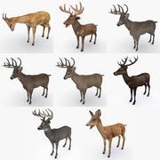 Deer Collection 3d model