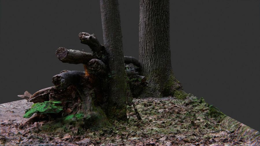 Banco di tronchi nella foresta royalty-free 3d model - Preview no. 5