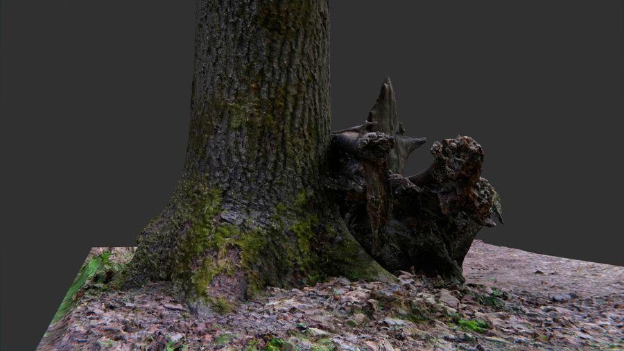Banco di tronchi nella foresta royalty-free 3d model - Preview no. 7