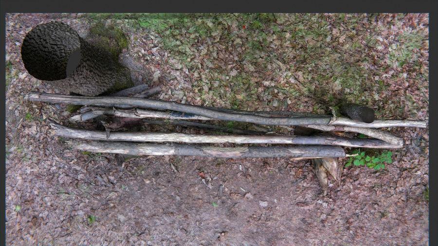 Banco di tronchi nella foresta royalty-free 3d model - Preview no. 9