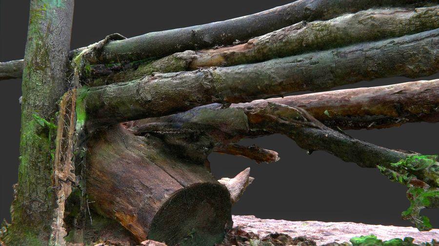 Banco di tronchi nella foresta royalty-free 3d model - Preview no. 13